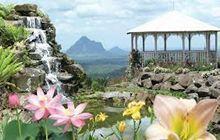 Maleny Botanics Day